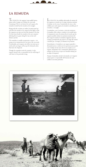 Vaquero Genesis Of The Texas Cowboy Humanities Texas