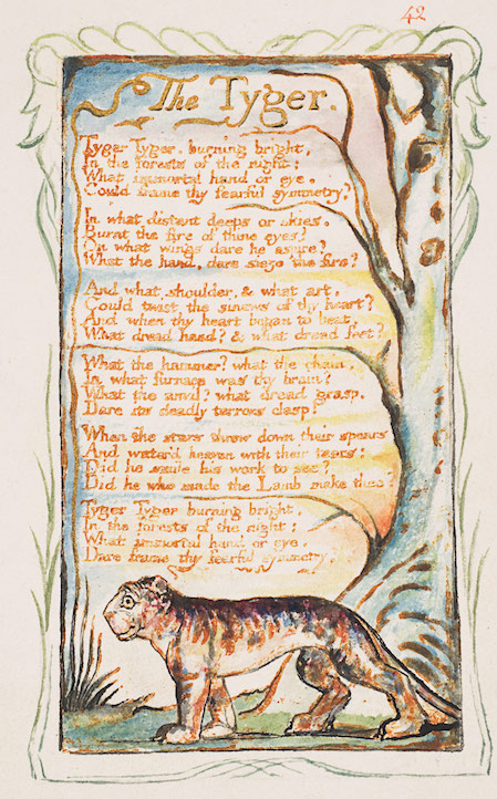 an analysis of william blakes poem the tyger The notes which follow are intended for study and revision of a selection of blake's poems about the poet william blake in the tyger blake analysis from.